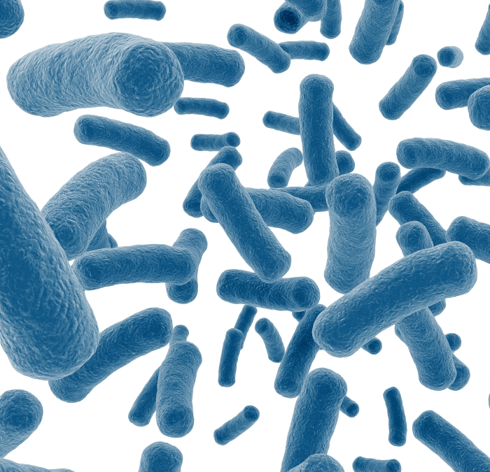 Probiotics and the Microbiome – What are they? Do I need them? Which ones do I buy?